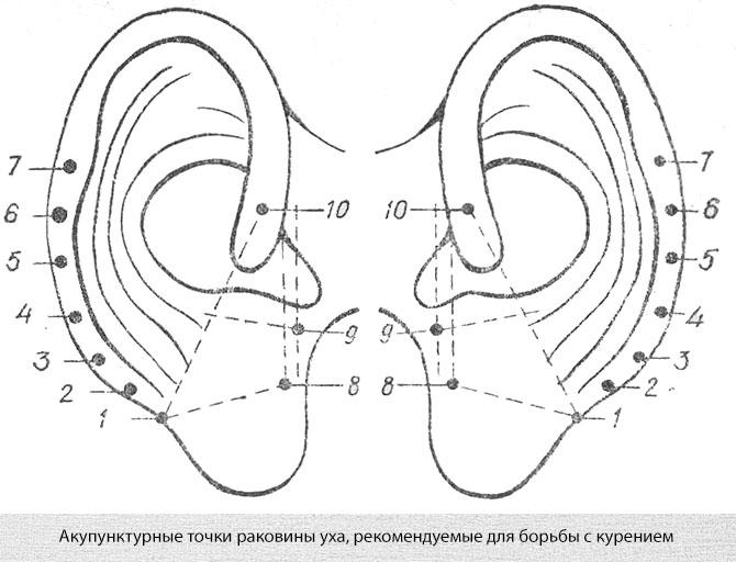 Акупунктурные точки против курения в ушных раковинах